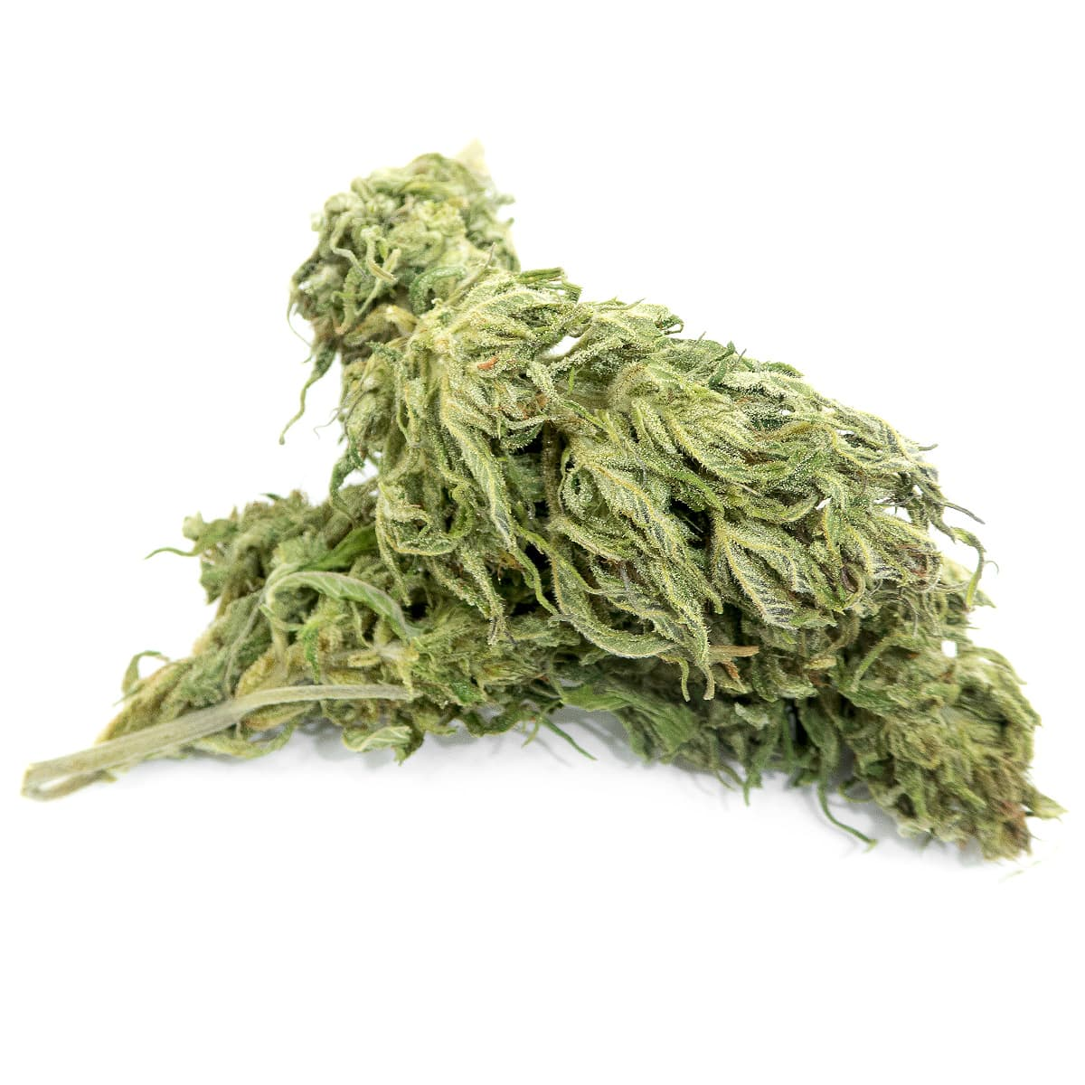 swiss-cbd-wholesale-legal-cannabis-light-indoor-premium-weed-europe-delivery-felina-big.jpg