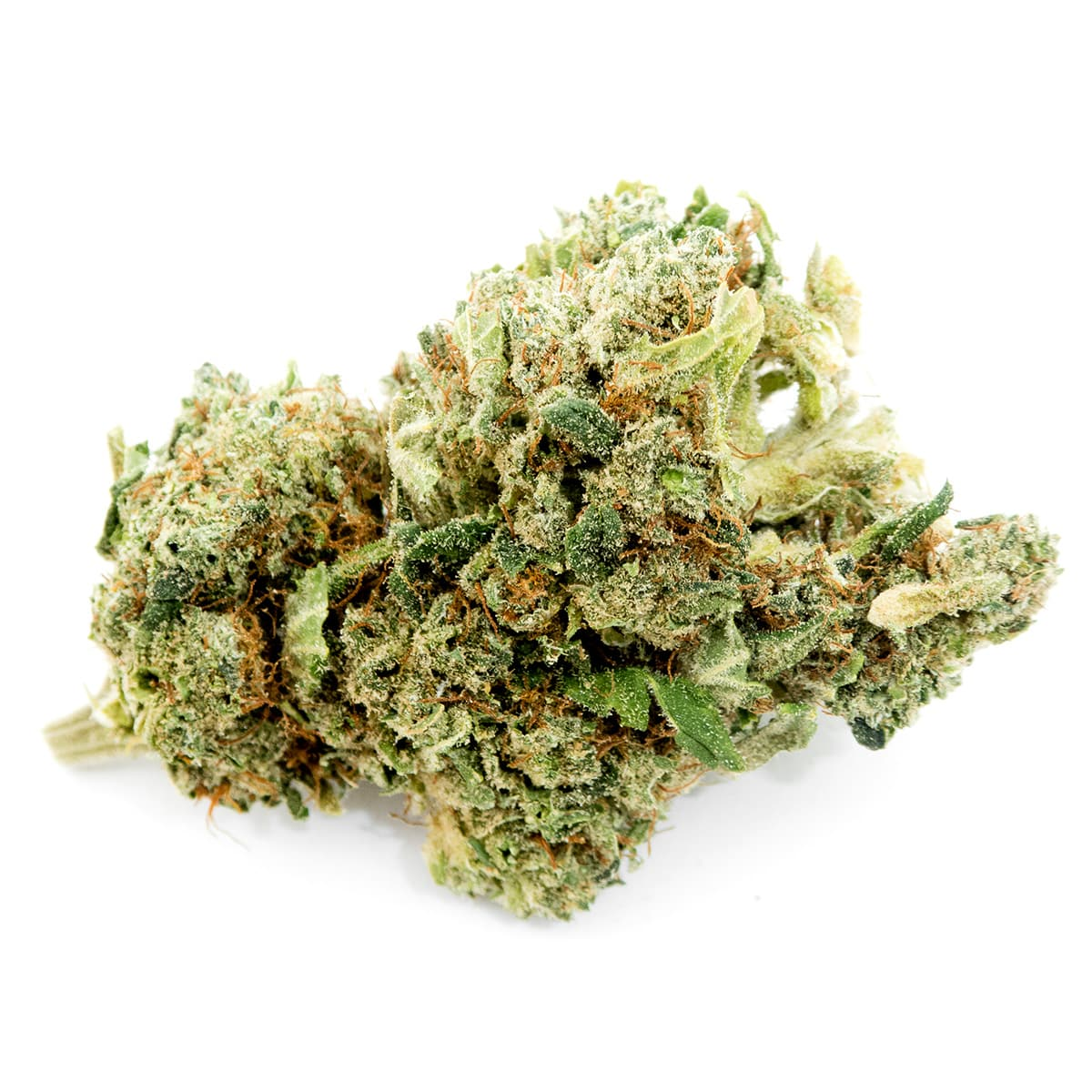 Swiss CBD Wholesale, cannabis light, premium legal weed delivery